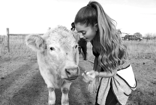 Pop Star Ariana Grande Visits a Farm Animal Sanctuary