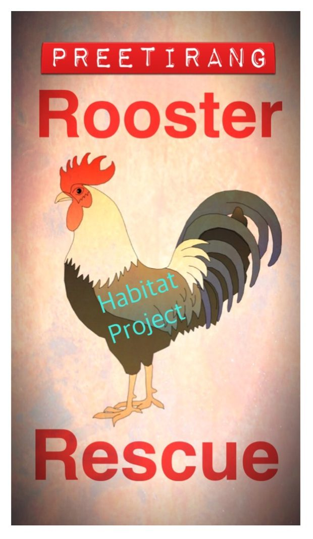 Please Help Preetirang to Save More Roosters